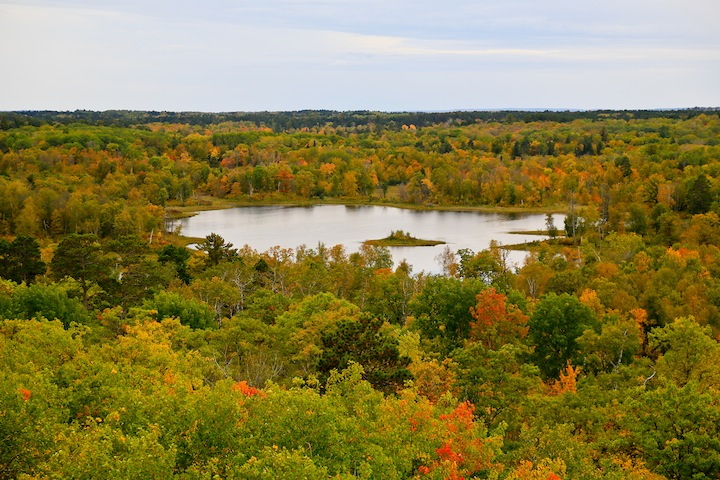 Clarke Lake from Aiton Heights Fire Tower
